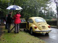 Beetle rear view