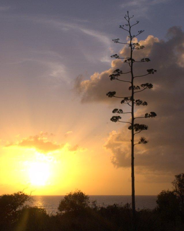 Sunset over Cupecoy Bay, St Maarten